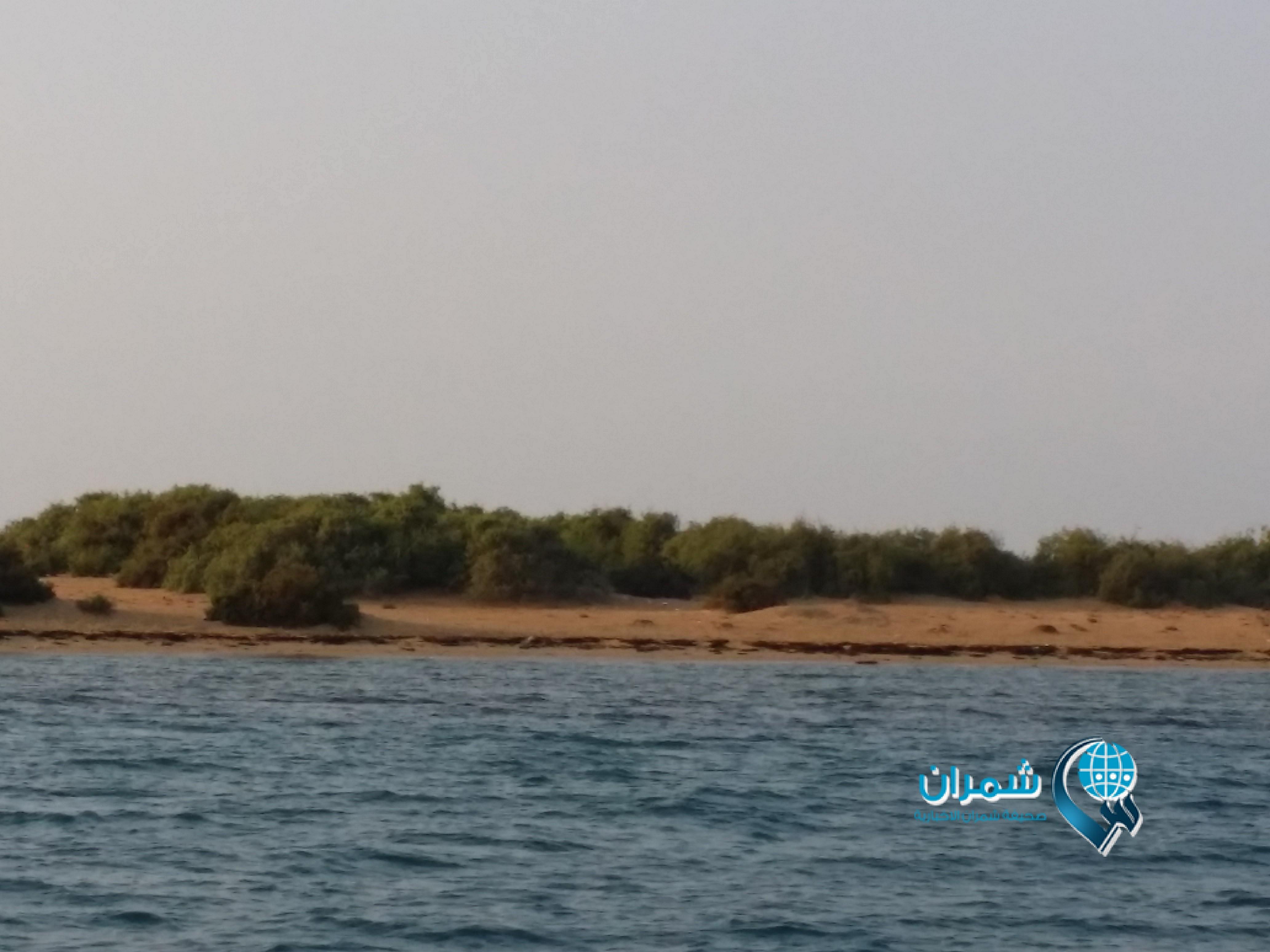صحيفة شمران الإخبارية سواحل وجزر غادة الجنوب